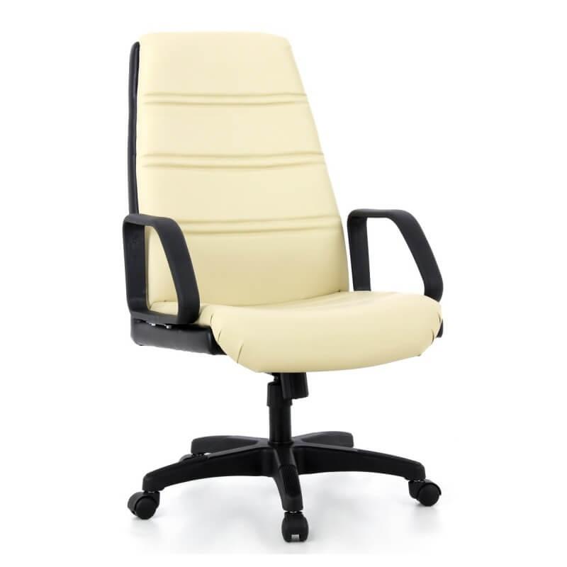 เก้าอี้ทำงานทั่วไป APEX APT-26